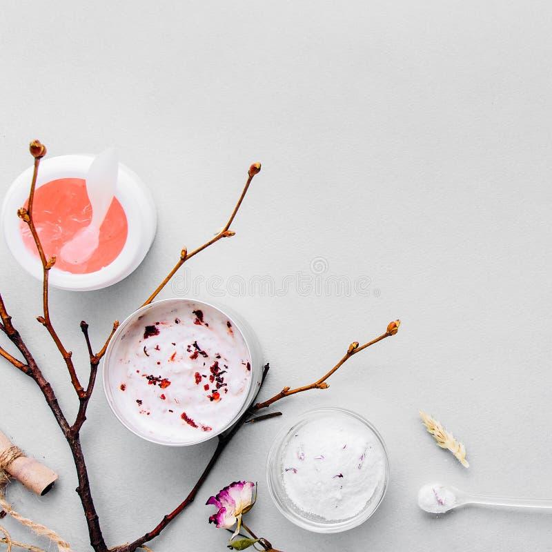 Cosméticos orgânicos com os ingredientes feitos a mão vegetais Termas, assistência ao domicílio: as máscaras, casca, esfregam Nut imagens de stock royalty free