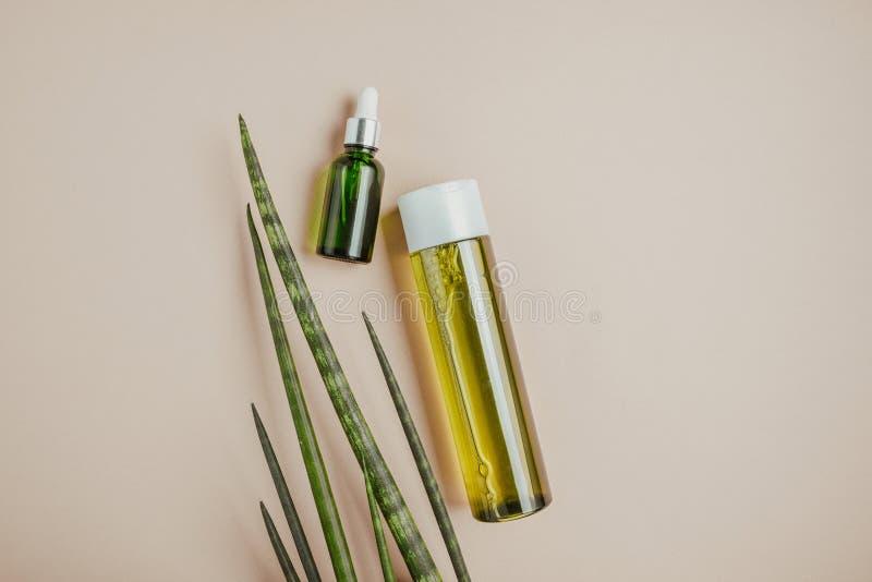 Cosméticos orgânicos, naturais Champô natural, tônico, soro para o cabelo e pele Configuração lisa, minimalismo, cor pastel imagens de stock