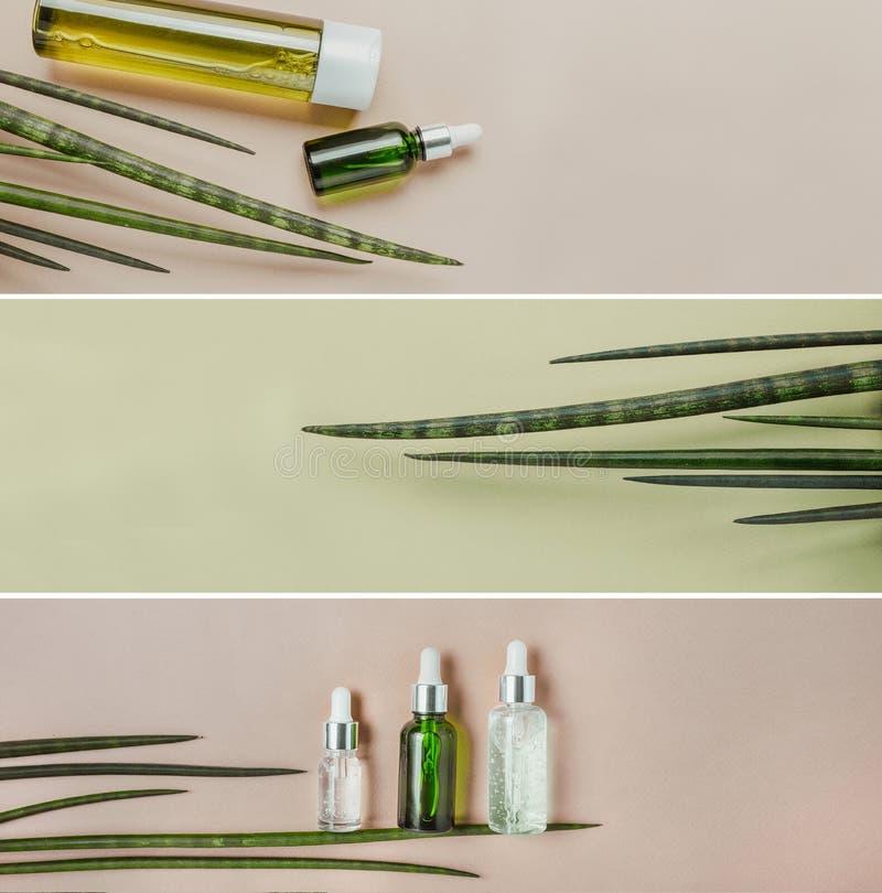 Cosméticos orgânicos, naturais, soro para cuidados capilares Configuração lisa, pastel Bandeira da foto da coleção fotos de stock royalty free