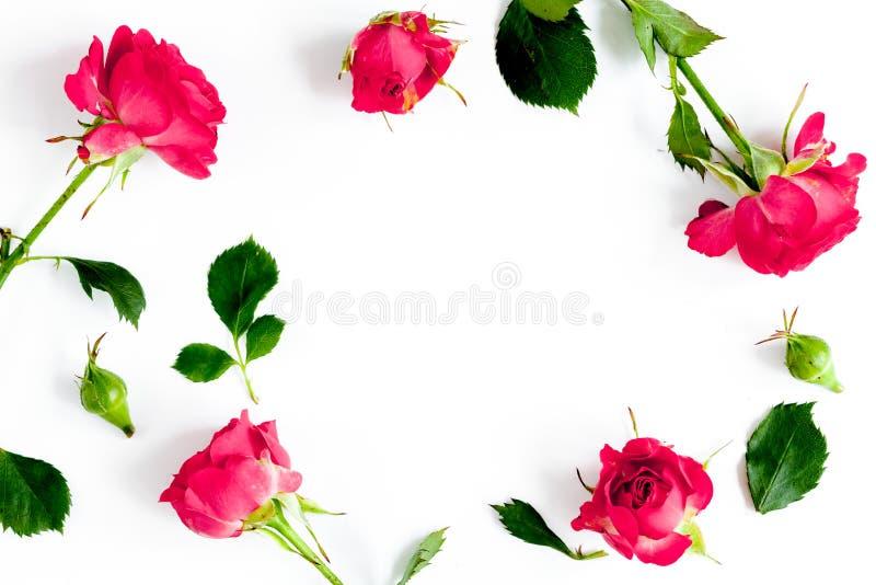 Cosmétiques décoratifs de couleur de baie avec la vue supérieure de fond blanc de roses photos libres de droits
