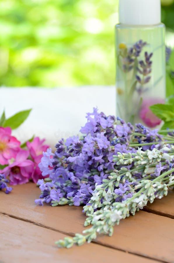 Download Cosmétiques Naturels Avec Des Herbes Image stock - Image du sauvage, chamomile: 56485151