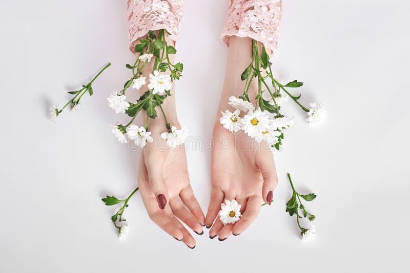 Cosmétiques naturels de main de beauté avec l'extrait de fleur, produit Main de femme de mode d'été sur la table avec la fleur, s image libre de droits