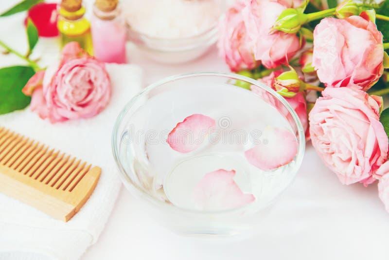 Cosm?tiques avec l'extrait rose de fleur Foyer s?lectif photos libres de droits