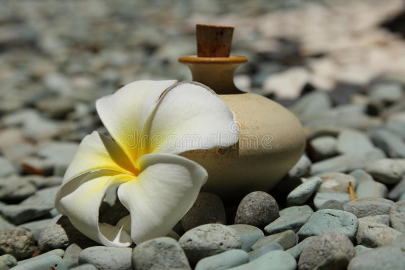 Download Cosmetic stock image. Image of calm, bloom, clay, essential - 21647191