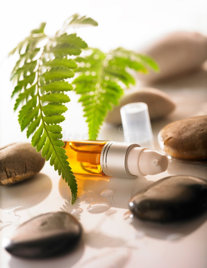 Download Cosmetic stock photo. Image of plant, medicine, beauty - 5080044