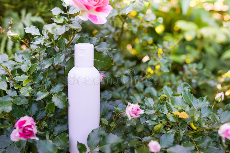 Cosmetic bottle on nature background with pink rose and green leaves, Blank label package for branding mock-up, Natural organic royalty free stock photos