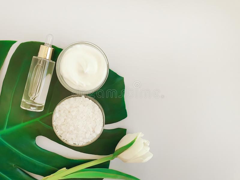Cosmetic cream essence, flower tulip, springtime product monstera leaf salt on a colored background stock photo