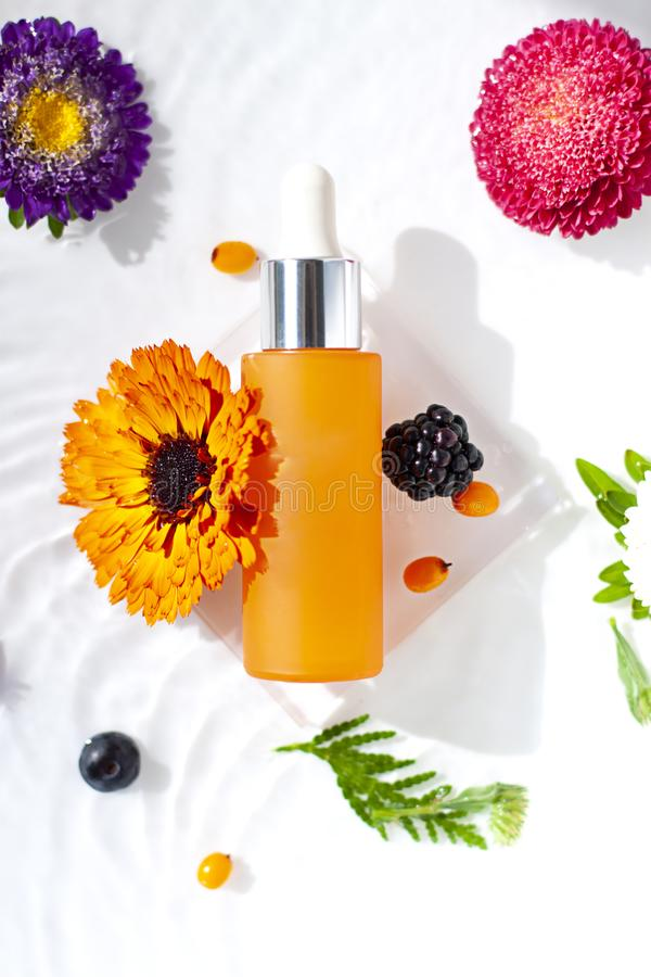 Cosmetic glass bottle with organic calendula and berries extracts or oils in the water background. Hydrating serum with antioxidants, vitamin C or peeling stock image