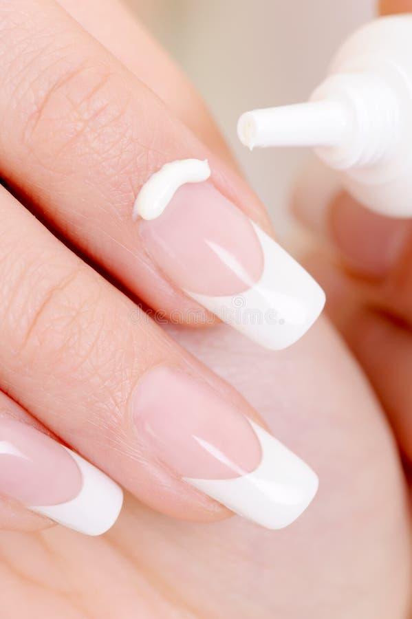 Free Cosmetic Moisturizing Cream On Female Fingernail Royalty Free Stock Photo - 11682515