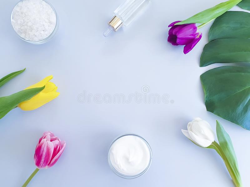 Cosmetic moisturizing natural clean organic cream, spring tulip flower monstera leaf on a colored background royalty free stock photo