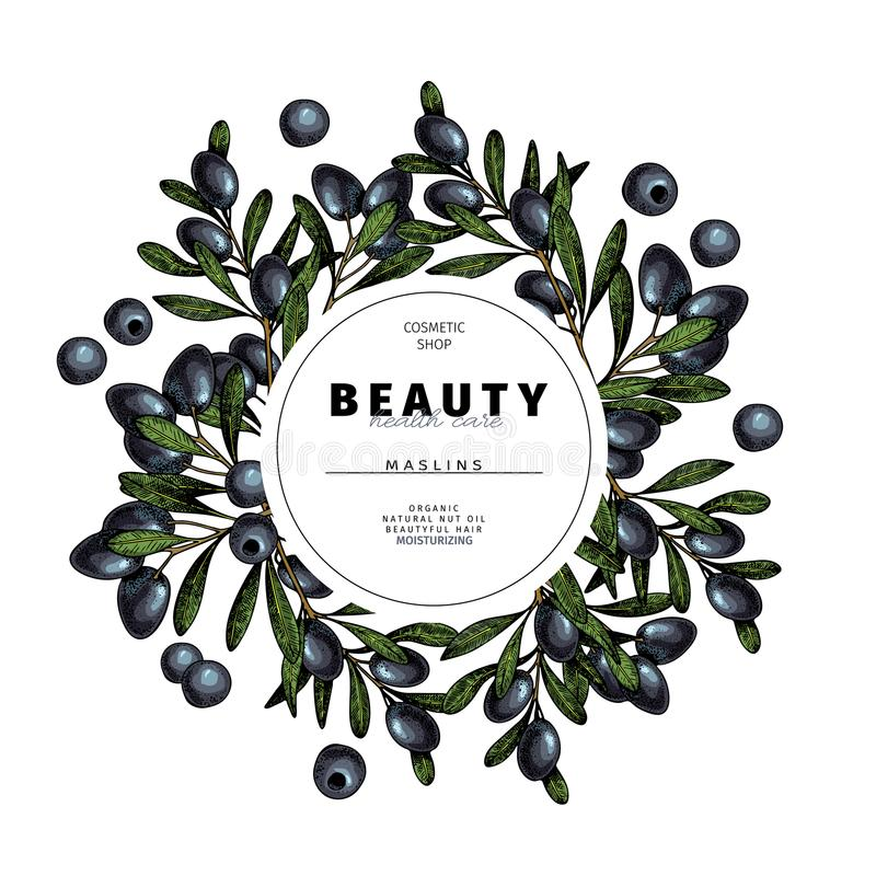 Cosmetic packaging template. Black olives, maslins oil beauty product. Vector hand drawn illustration. Organic. Cosmetic packaging template. Black olive, maslins vector illustration