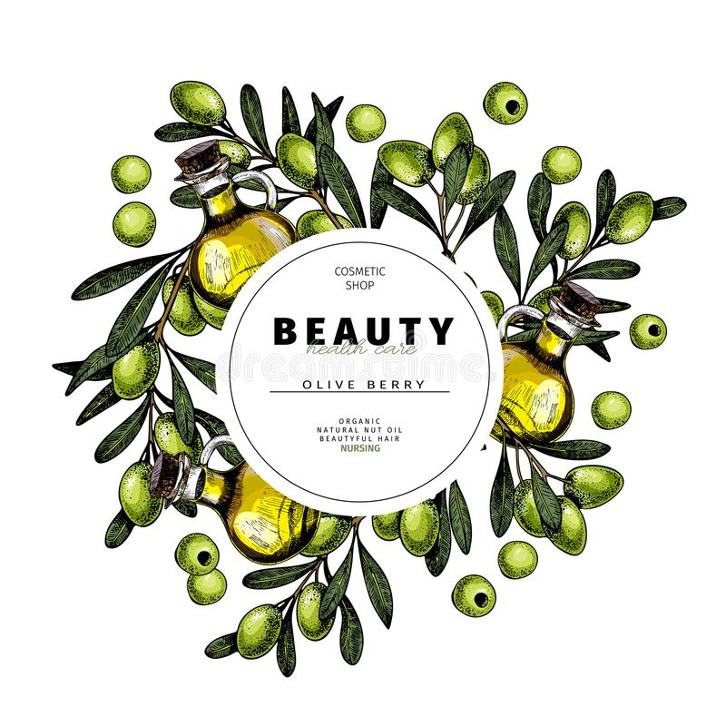 Cosmetic packaging template. Green olives oil beauty product. Vector hand drawn illustration. Organic vegetarian food. Ingredient. Good for label, beauty shop vector illustration