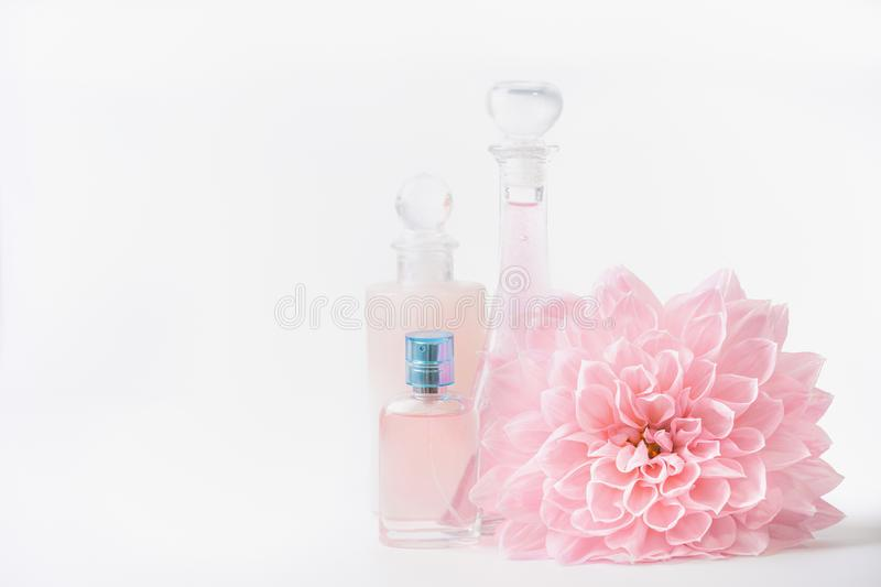 Cosmetic and perfume bottles with pink pale flower on white background, front view. Beauty and skin care royalty free stock photo