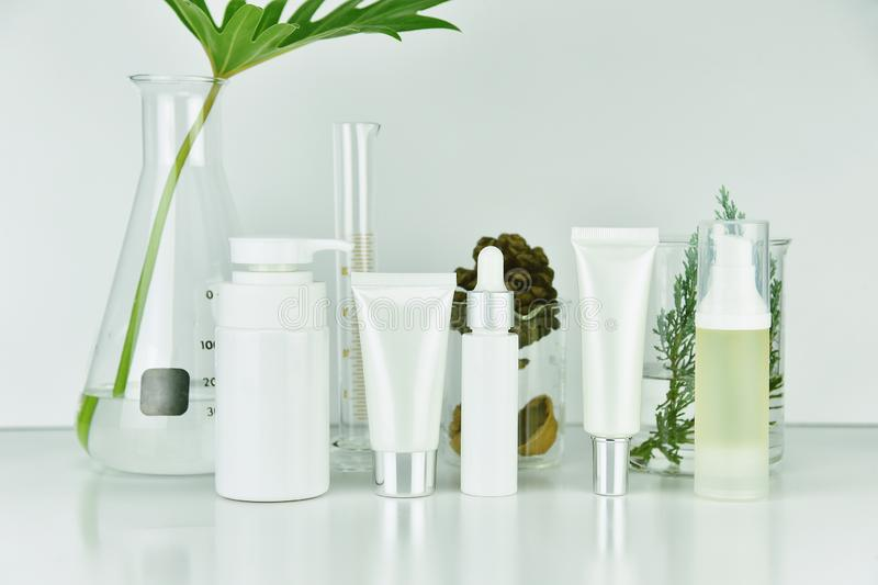 Cosmetic and skincare bottle containers with green herbal leaves, Blank label package for branding mock-up. stock photo