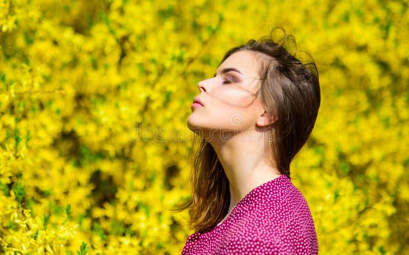 Cosmetici di trucco Freschezza della primavera Bellezza naturale skincare grazioso della donna Concetto naturale dei cosmetici Cu fotografia stock libera da diritti