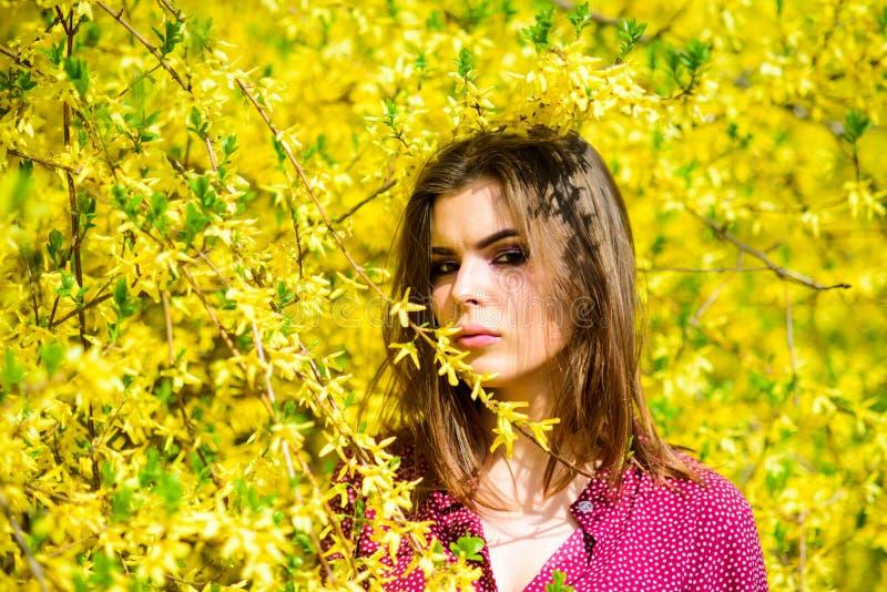 Cosmetici organici dell'ambiente naturale Freschezza della primavera Fiori di fioritura degli alberi Bellezza naturale skincare g immagine stock libera da diritti