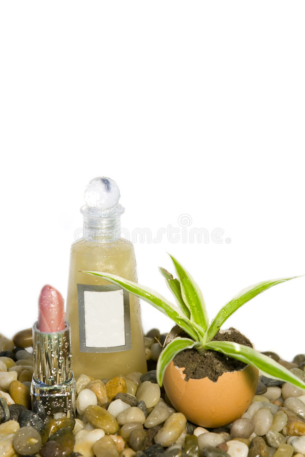 Download Cosmetics Royalty Free Stock Photography - Image: 4288297