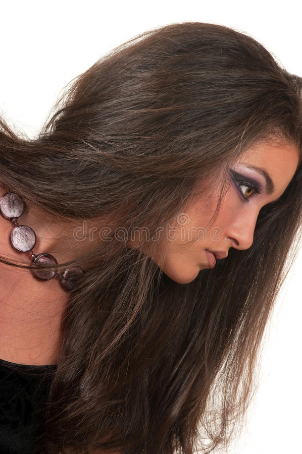 Download Cosmetics And Hairstyle Stock Photo - Image: 16708210