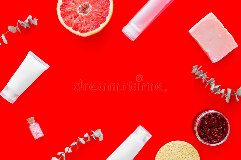 Cosmetics with natural herbal and citrus ingredients on red background top view copyspace royalty free stock photo