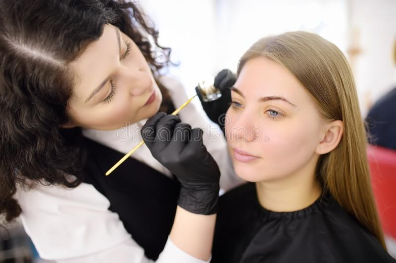 Cosmetologist painting eyebrows by brush. Attractive woman getting facial care and makeup at beauty salon. Architecture eyebrows. Cosmetologist painting eyebrows royalty free stock image