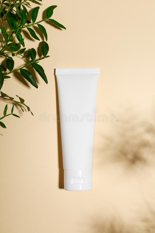 Cosmetology pink tube on minimalist beige background. Eye cream, foundation, concealer with green leaves on nude backdrop. Decorative fresh foliage twig royalty free stock images