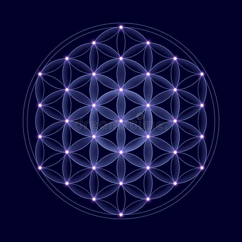 Cosmic Flower of Life With Stars royalty free illustration