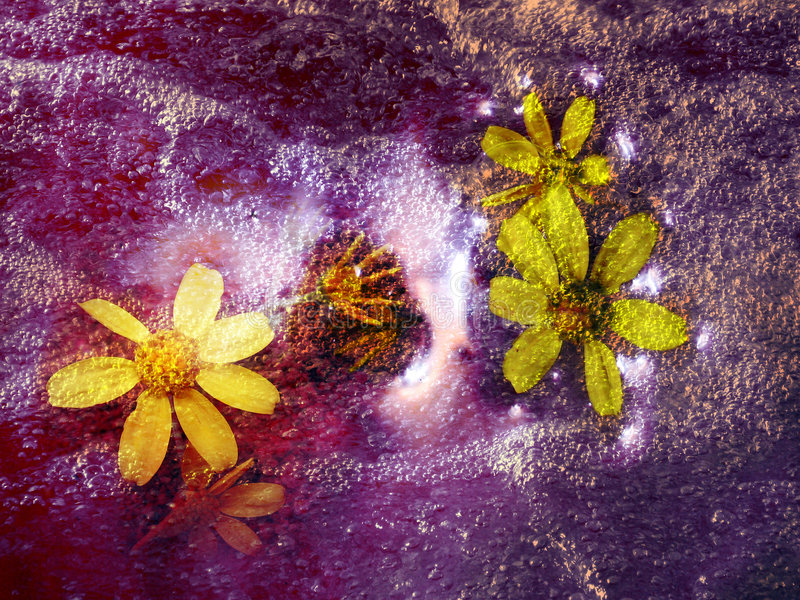 Cosmic Flowers. A beautiful background of cosmic flowers floating on the liquid of space stock image