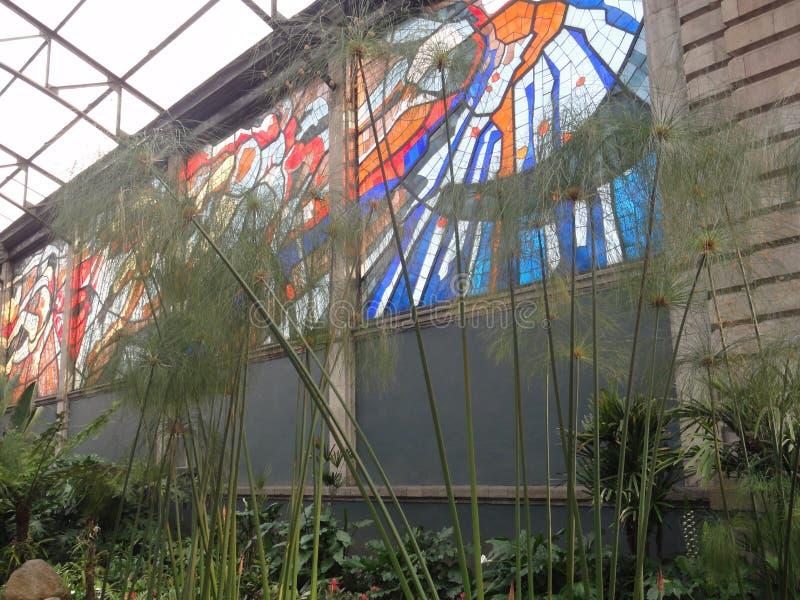 Cosmovitral is een botanische tuin is in Toluca - Mexico royalty-vrije stock afbeeldingen