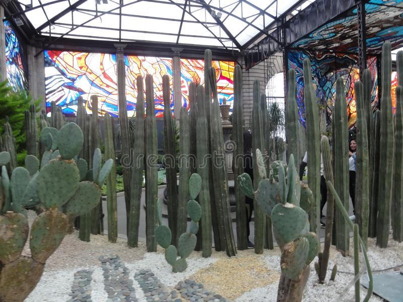Cosmovitral is een botanische tuin is in Toluca - Mexico royalty-vrije stock foto