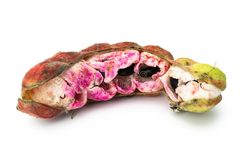 Cosses de tamarinier de Manille images stock