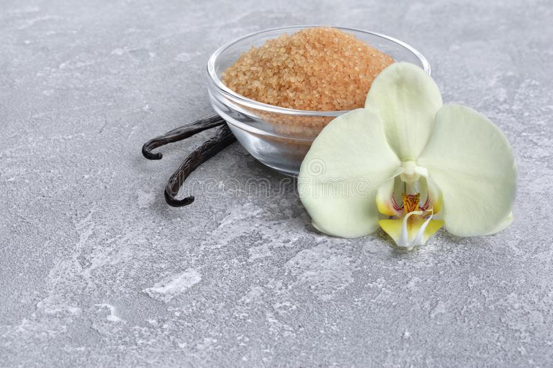 Cosses de vanille avec une fleur et un sucre de canne brun comme ingrédient pour la cuisson photos stock