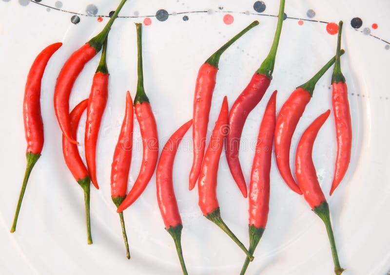 Cosses de vue supérieure de plan rapproché de poivre d'un rouge ardent avec des coupes vertes dans le plat blanc sur le blackgrou photo stock