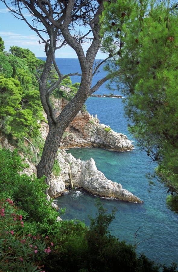 Costa adriático em Dubrovnik fotografia de stock