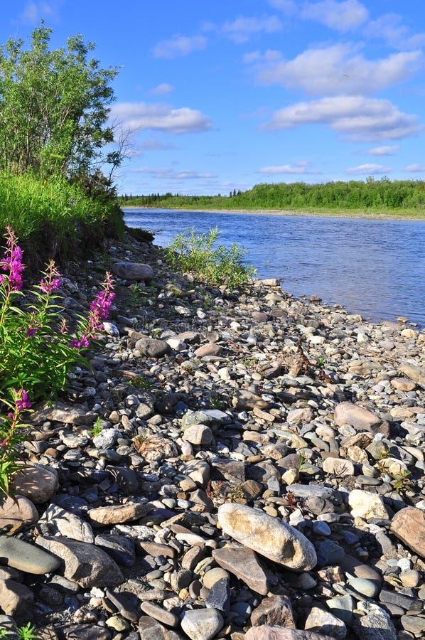 Costa al norte del río en verano fotos de archivo libres de regalías