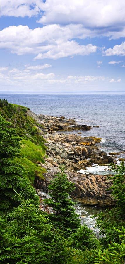 Costa atlántica en Terranova imagenes de archivo