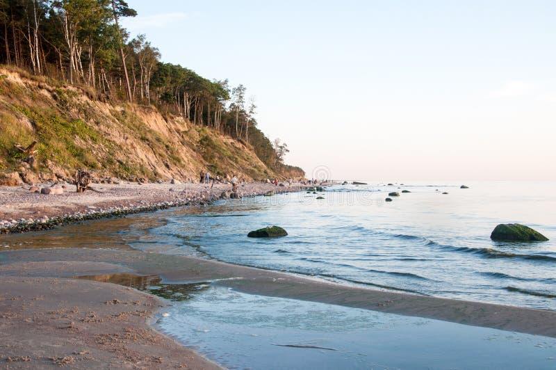 Download Costa báltica imagen de archivo. Imagen de escénico, árbol - 44855971