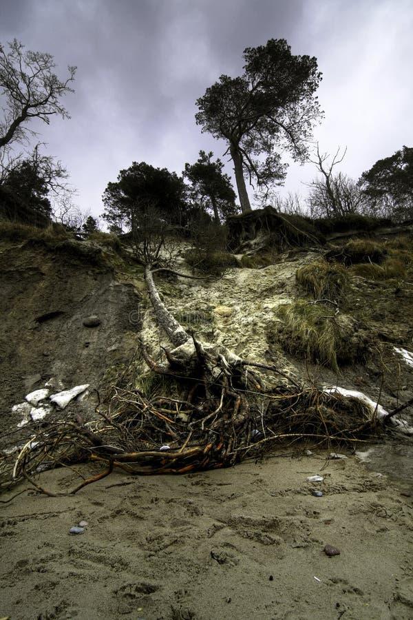 Costa báltica después de la tormenta foto de archivo libre de regalías