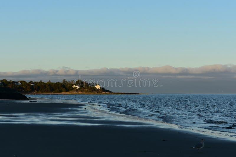 Costa bonita do bacalhau de cabo com as ondas pequenas que deixam de funcionar dentro fotografia de stock royalty free