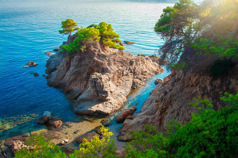 Costa Brava-zeegezicht Overzees en rotsachtige klip met boom Schilderachtige kust in Lloret de Mar Middellandse Zee baai royalty-vrije stock afbeeldingen