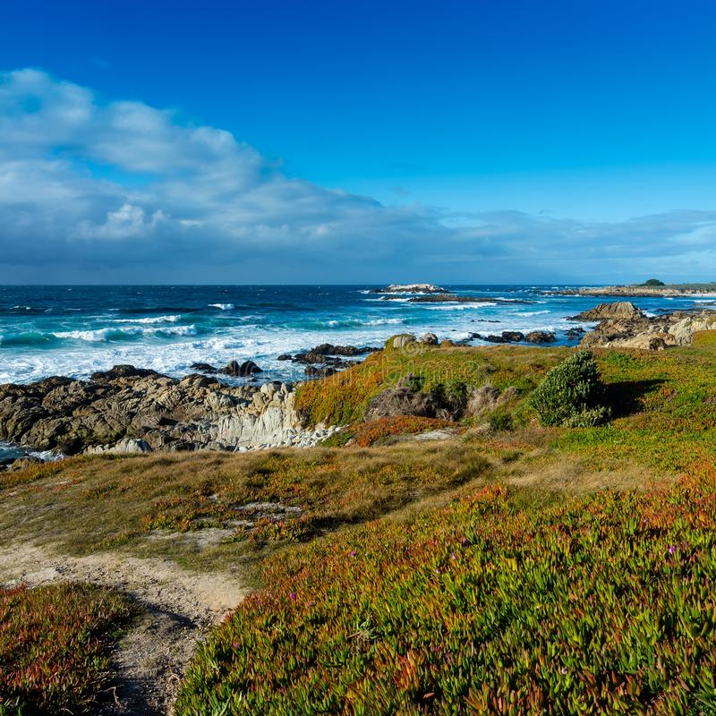 Costa costa cerca península de Pebble Beach, Pebble Beach, Monterey, C foto de archivo libre de regalías