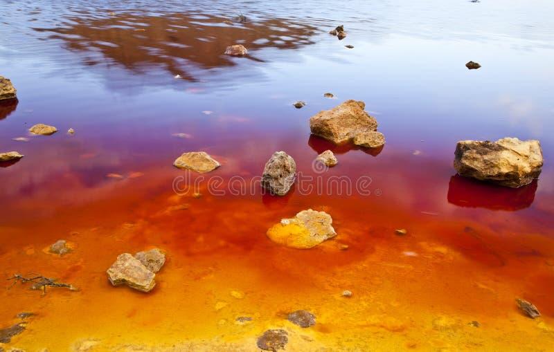 Costa colorida do lago fotos de stock royalty free