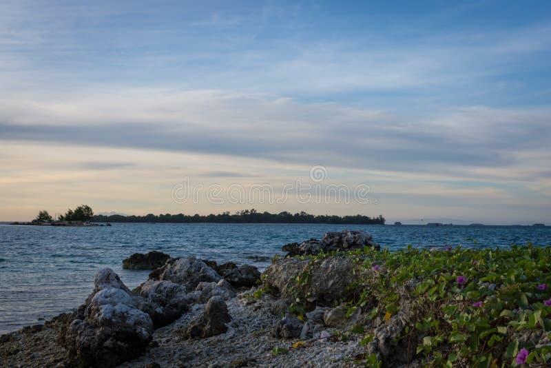 Costa con las medias piedras del primero plano y flores y el cielo de oro de la salida del sol colorida fotografía de archivo libre de regalías