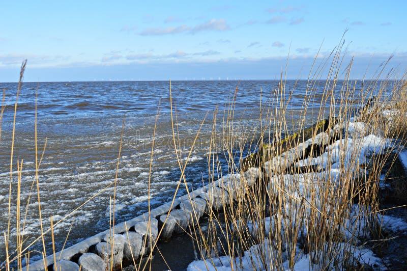 Costa congelada em Dinamarca fotos de stock royalty free