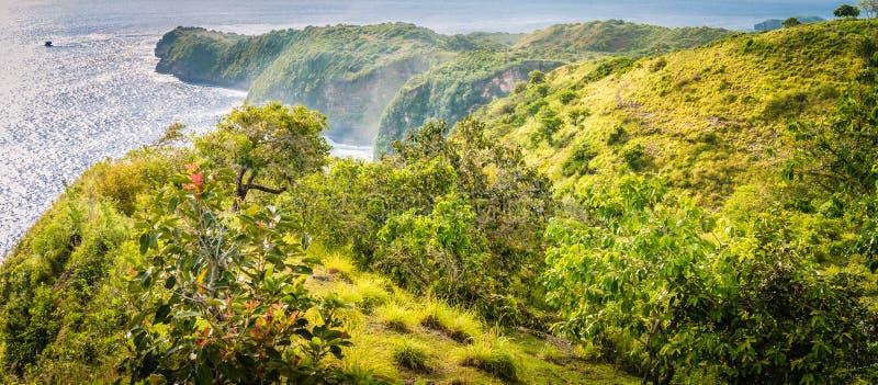 Costa costa asombrosa hasta la playa de Wasu cerca de la bahía del Manta o la playa de Kelingking en la isla de Nusa Penida, Bali foto de archivo libre de regalías