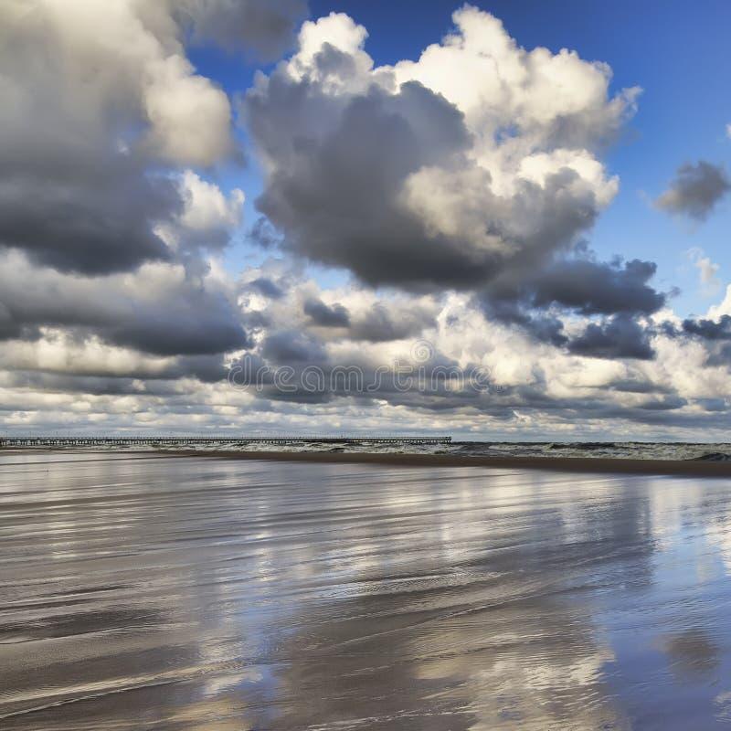 Costa costa del mar Báltico. fotografía de archivo libre de regalías