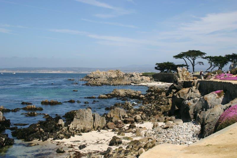 Costa costa pacífica rugosa fotografía de archivo