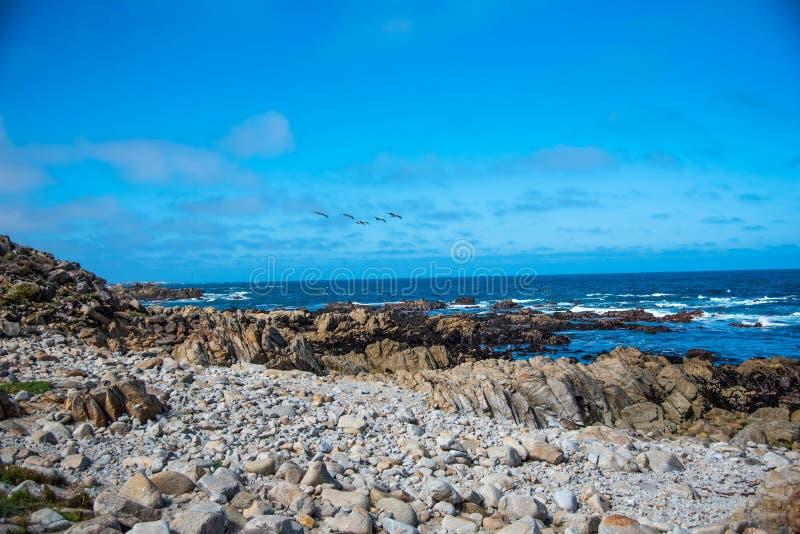 Costa costa rocosa escénica a lo largo de la impulsión histórica de 17 millas foto de archivo