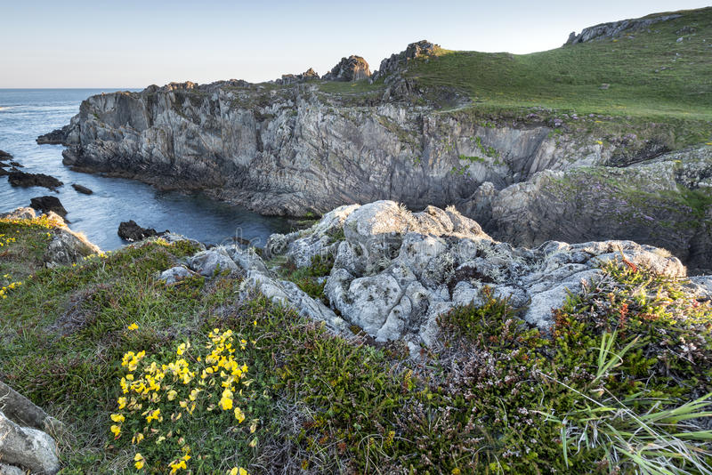 Costa costa rugosa en Irlanda fotografía de archivo