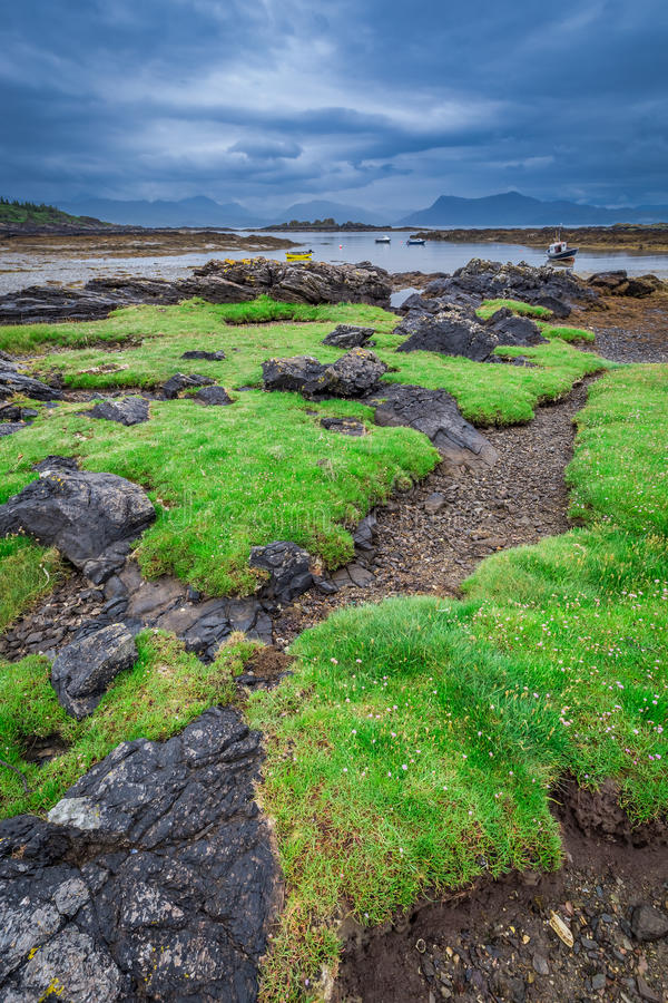 Costa costa verde durante la bajamar en Escocia fotos de archivo libres de regalías