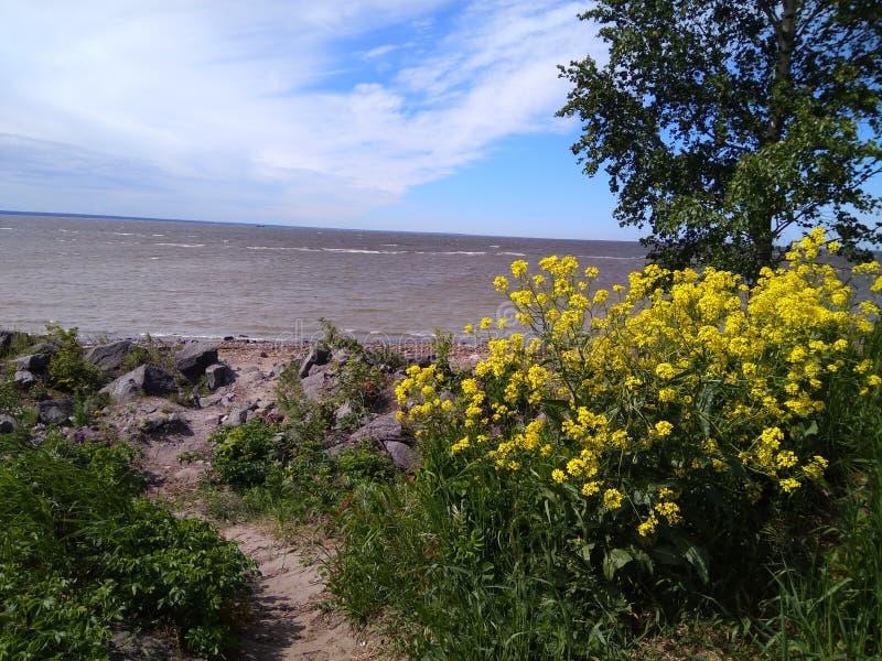 A costa da baía contra o céu azul com nuvens foto de stock